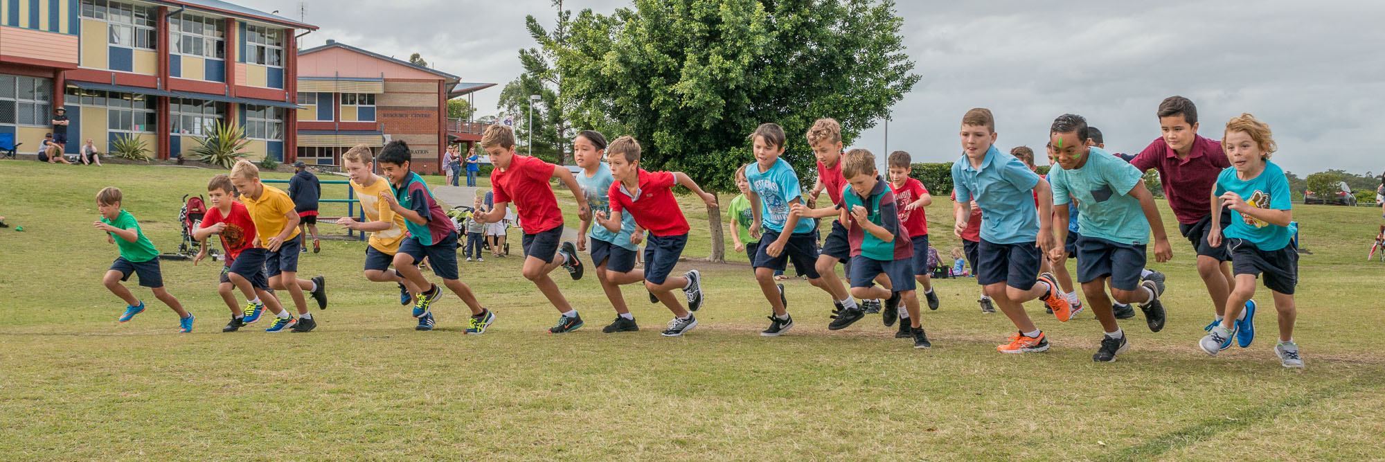 Senior Cross Country Races